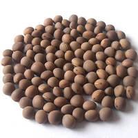 Вика яровая Ярославна сорт высокопроизводительный на кормовую массу и семена, упаковка 1 кг