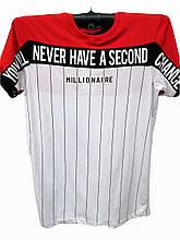 Футболка мужская Millionaire с полосками комбинированная