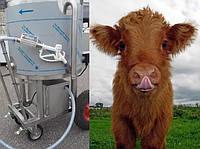 Молочное такси: передвижная емкость - пастеризатор для выпойки телят