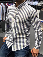Мужская полосата рубашка Lacoste