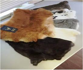 Шкура кролика после вычинки, цвет меха натуральный или крашеный