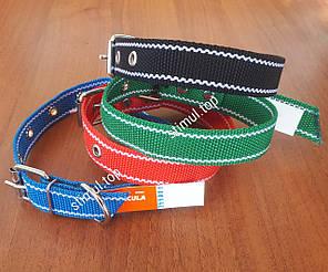 Ошейник одинарный 45 мм х 760 мм капроновый / нейлоновый / синтетический / цветной / ошийник / для собак, фото 2