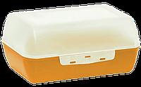 Ланчбокс «Яскраво» 1л, 160х120х70 мм мандарин, фото 1