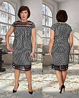 Женское стильное платье в горох №404 (р.50-56) черное