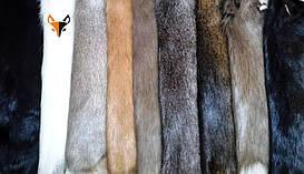 Выделанная шкура нутрии, цвет меха натуральный или крашеный