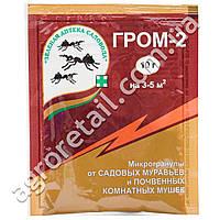 Инсектицид Гром-2 10 г