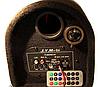 "Активный сабвуфер 6"" Xplod 300W, фото 4"