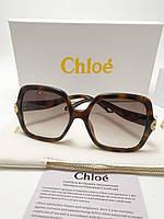 Женские солнцезащитные очки Chloe CE746 цвет коричневый лео