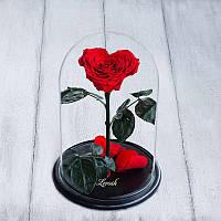 Роза в колбе Lux сердце красный 830024
