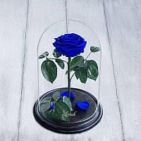 Роза в колбе Lux синяя раскрытая 830022