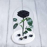 Роза в колбе Premium+ черная 830044