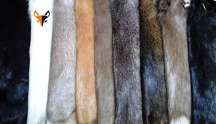 Поступление в продажу шкур фабричной выделки: лиса, кролик, енот и нутрия от Харьковской меховой фабрики