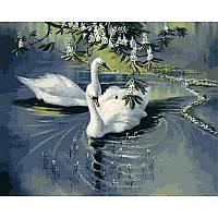 "Картина по номерам, картина-раскраска ""Пара лебедей"" 40Х50см VP233"