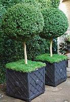 Плантаторы, ящики для растений
