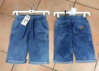 Шорты  для мальчиков (джинсовый трикотаж) Childhood 116-146 р.р.