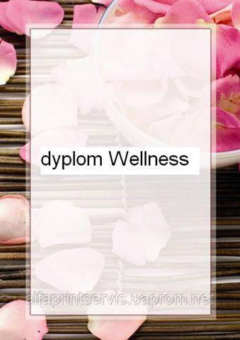 Дизайнерский картон, Диплом 170 гр, уп/25 Wellness