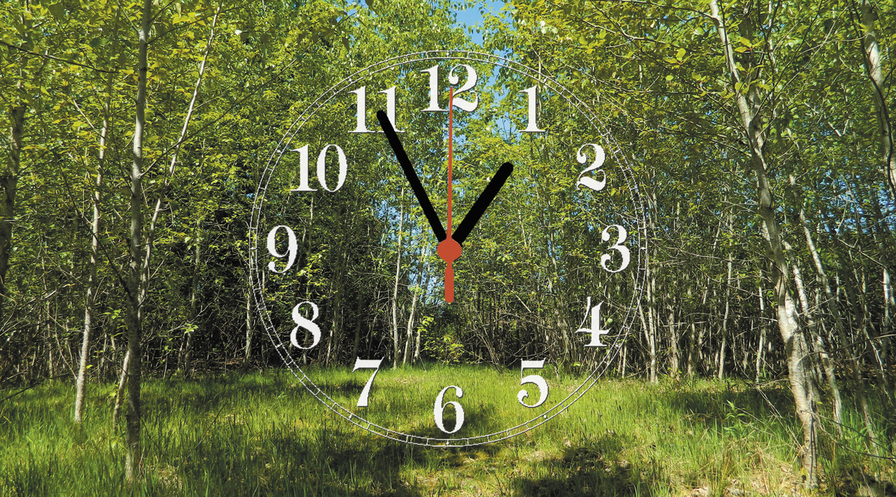 """Часы настенные стеклянные """"Лес весной"""""""