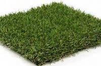 Декоративная трава HIGHLAND