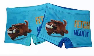 Плавки для мальчиков, Венгрия, Disney, арт. 910-490