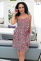 Платье  полоска в расцветках  72789Б
