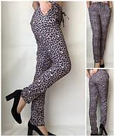 Летние женские брюки штаны молодежные Султанки А17 леопардовые