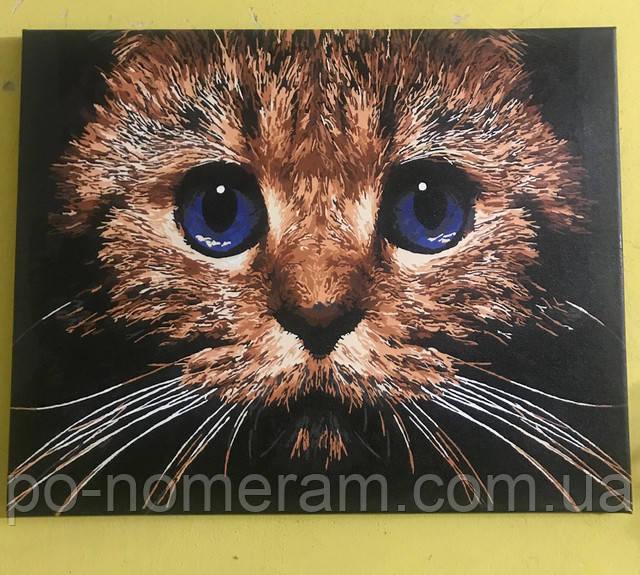картины акрилом кошка