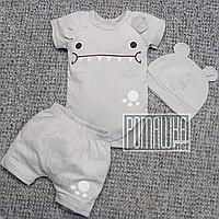 Летний 80 9-12 месяцев костюмчик комплект для малышей для мальчика боди и шорты на лето КУЛИР 4706 Серый
