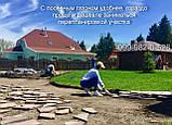 70грн/кг мешок 25кг Газон-Распродажа 2021 семена газонных трав оптом по низким ценам, фото 9