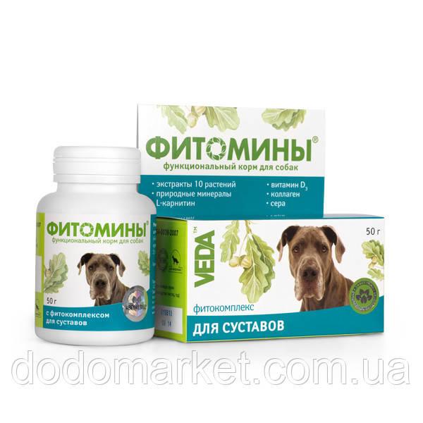 Фитомины для укрепления и восстановления суставов у собак