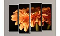 Модульная картина Оранжевая гербера-2 69х96 см (HAF-021)