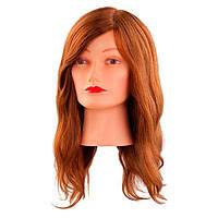 """Comair Болванка женская светлый ШАТЕН """"NATURELL"""", длина волос 40 см. 100% человечесие волосы"""
