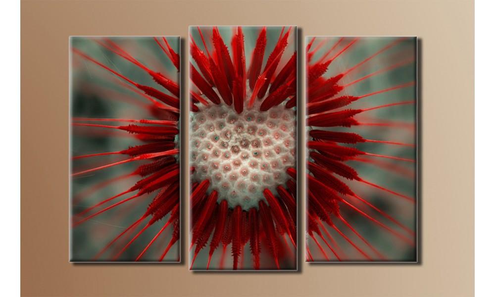 Модульная картина Стильный одуванчик 54х77 см (HAT-026)