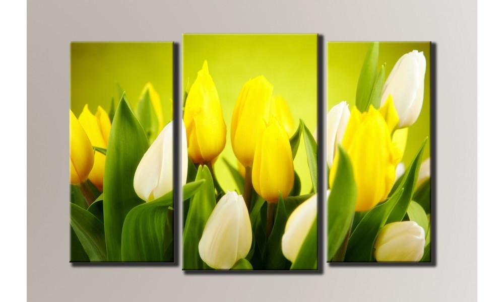 Модульная картина Тюльпаны-2 54х82 см (HAT-004)