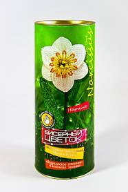 Бисерный цветок: Нарцисс Danko-Toys