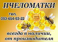 Пчеломатка украинской степной породы неплодная 2020, фото 1