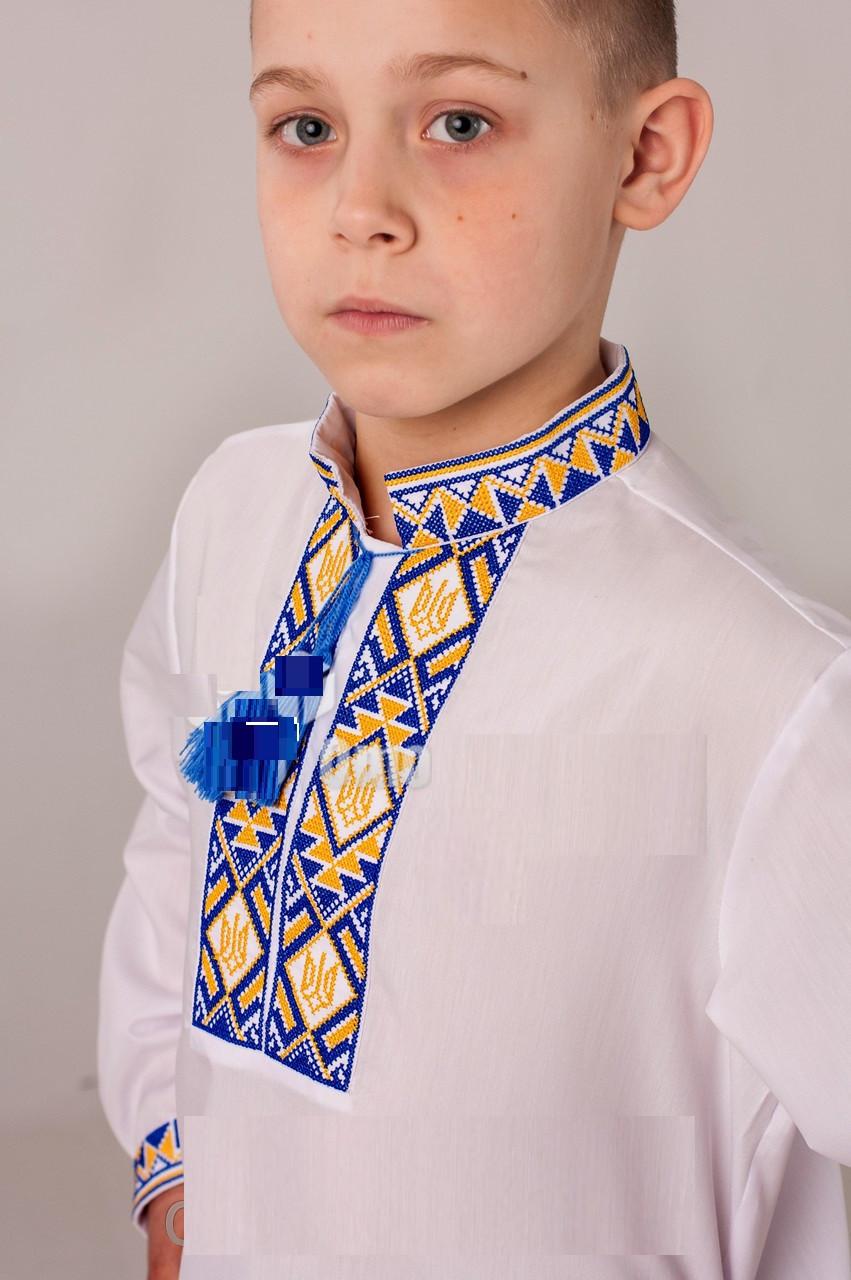 Вышиванка для мальчика с сине-желтой вышивкой