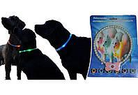 Светящийся ошейник для собак в виде жемчужин Pet's simulated pearl gleamy necklage / 185 мм