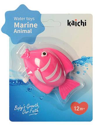 Водоплавающая игрушка K999-209-1 (Лягушка) заводная, на листе, 15-20-4см (Рыбка Розовая), фото 2