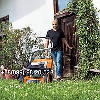 Белый клевер 1кг упаковка Пиполина Ривендел Юра Рома trifolium семена цветы для газона лилипут оптом цена