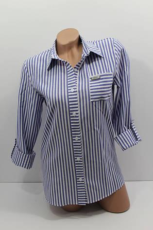 Женская рубашка в полоску хлопок с длинным рукавом оптом Турция, фото 2