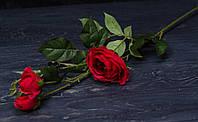 Ветка роз Д. Остина ярко-красного цвета премиум, фото 1