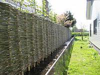 Плетеный забор, плетеные заборы (тын) в Киеве
