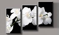 Модульная картина Белая орхидея-3 70х102 см (HAT-190)