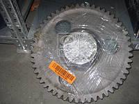 Шестерня ведомая  МТЗ (Z=51)  1221 (производство  МТЗ). 1221-2407122. Ціна з ПДВ.