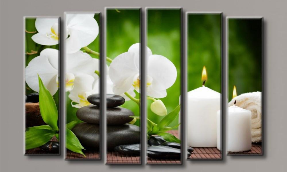 "Модульная картина Орхидея на камнях-7"" 100х150 см (HAV-011)"