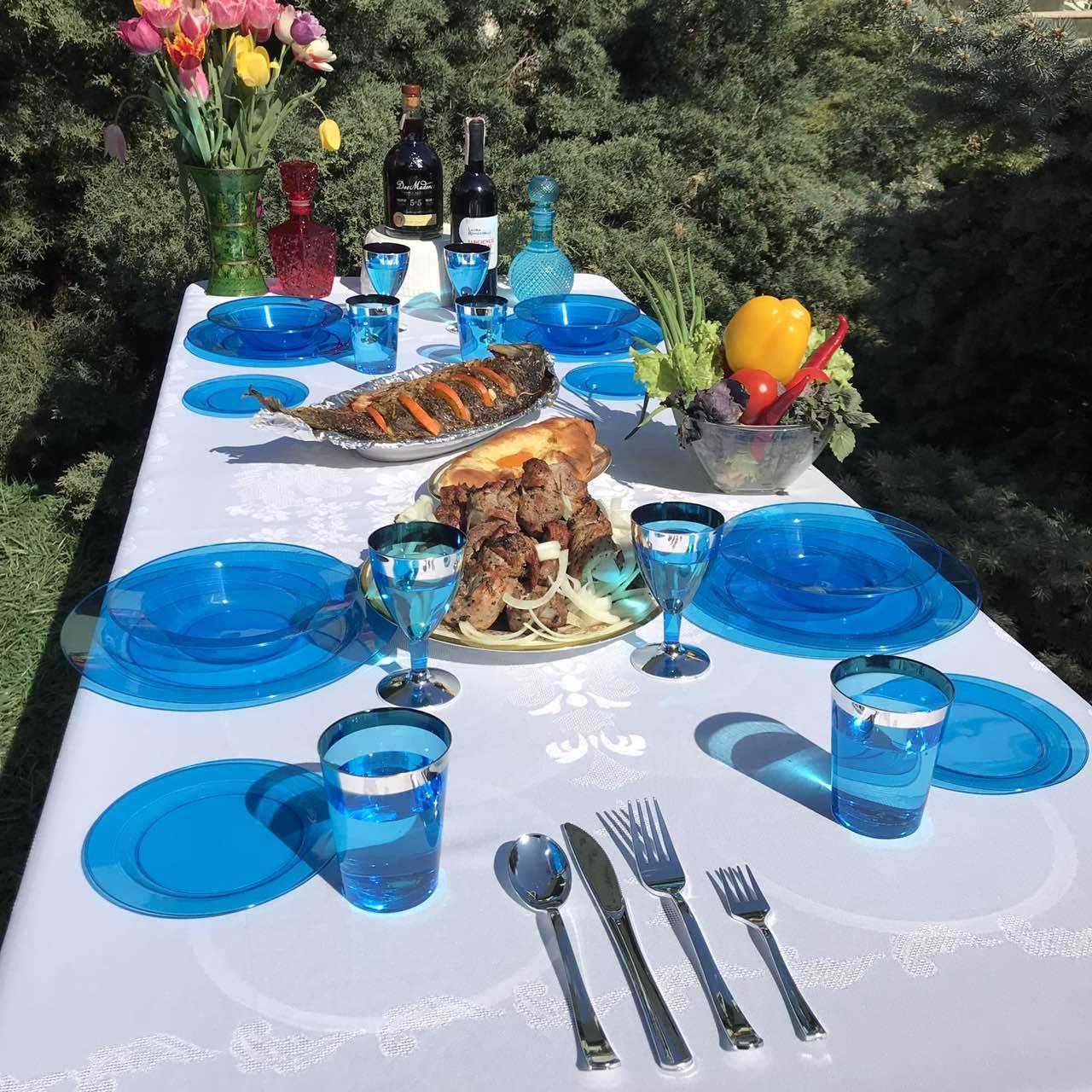Посуда пластиковая многоразовая плотная для дач. Полная сервировка стола 90 шт 6 чел