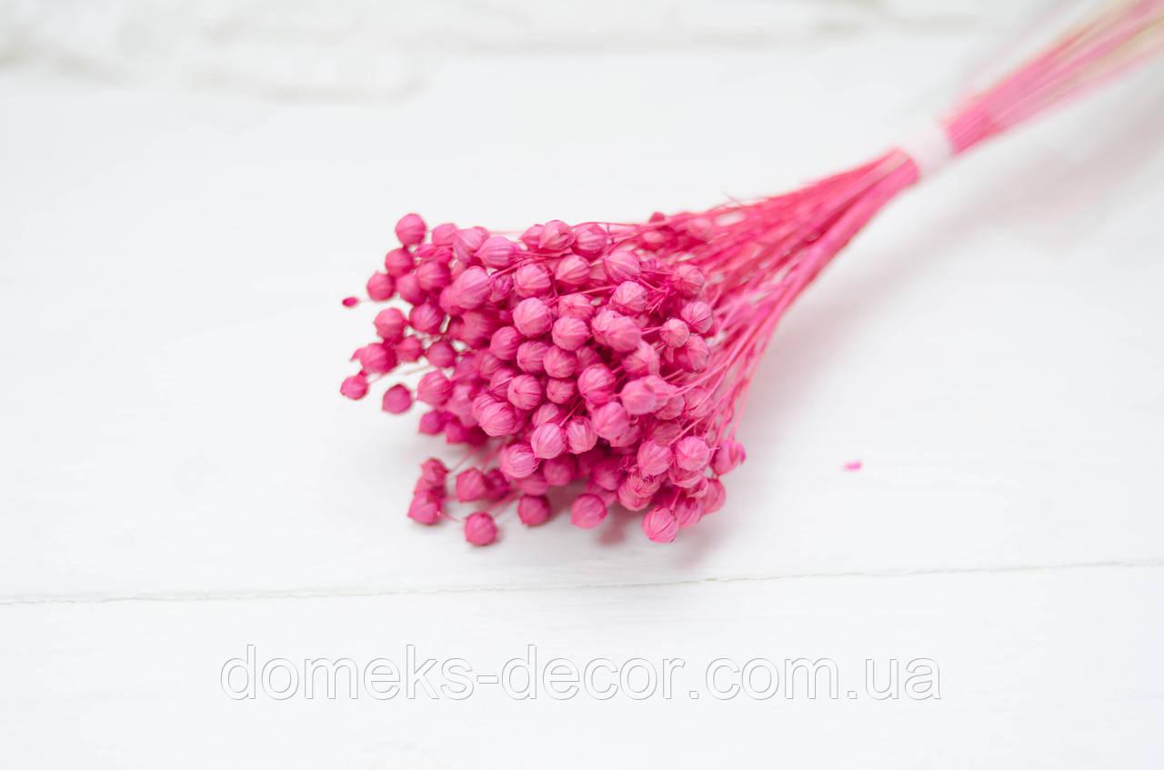 Сухоцвет мелкий льна розового цвета