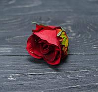 Головка розы красная, фото 1