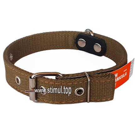 Ошейник двойной 30 мм х 640 мм брезентовый / усиленный с кольцом / двухслойный / ошийник для собак ТМ Canicula, фото 2