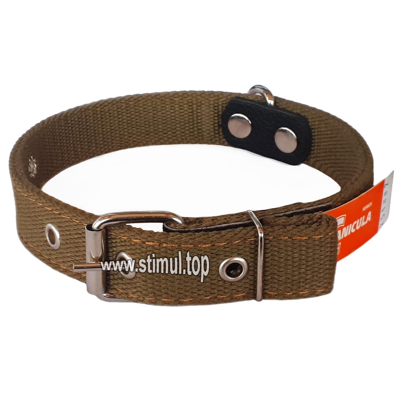 Ошейник двойной 40 мм х 810 мм брезентовый / усиленный с кольцом / двухслойный / ошийник для собак ТМ Canicula
